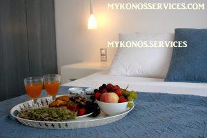 D Angelo villa sea view - rent villa mykonos services 16
