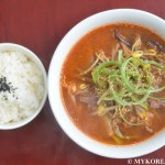 Yukgaejang 육개장 (Spicy Beef Soup with Vegetables)