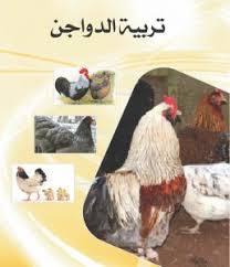 تحميل كتاب تربية الدواجن pdf برابط واحد