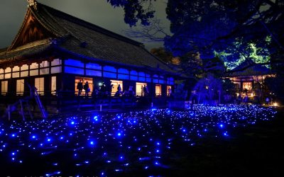 Light Show at the Shoren-In Temple