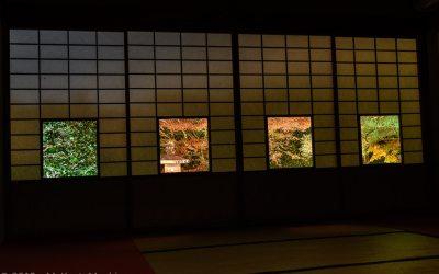 Unryû-In Temple Light Up