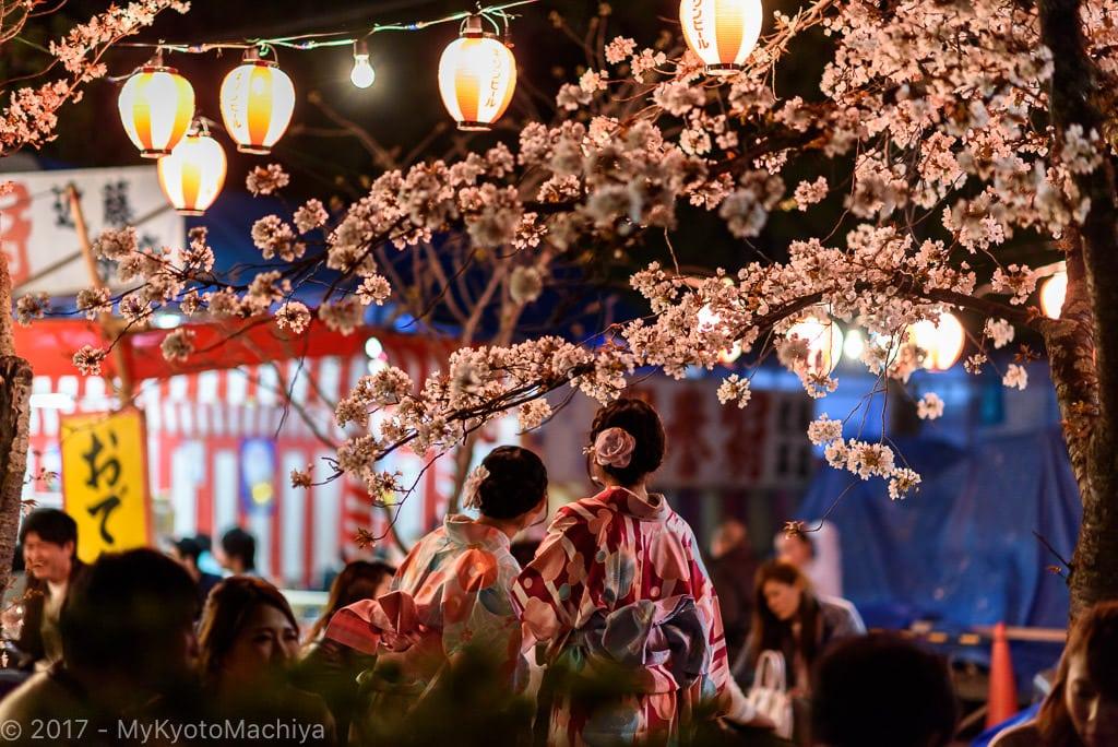 160406_Kyoto-Maruyama-Koen-Hanami-Party-756796
