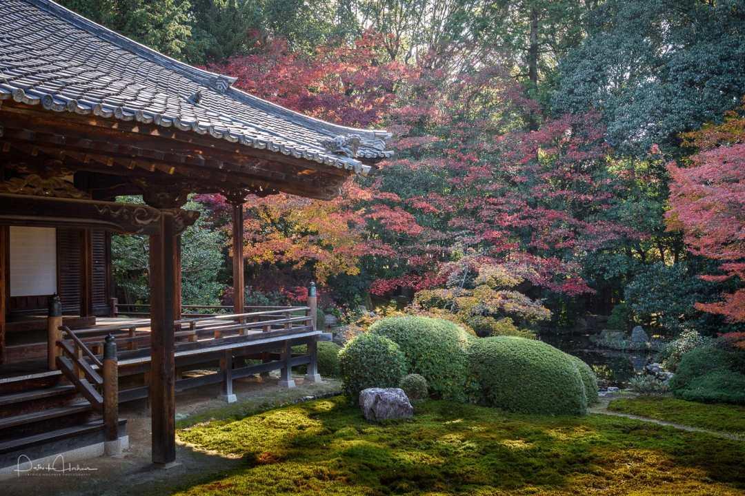 Zuishin-In Temple, the garden