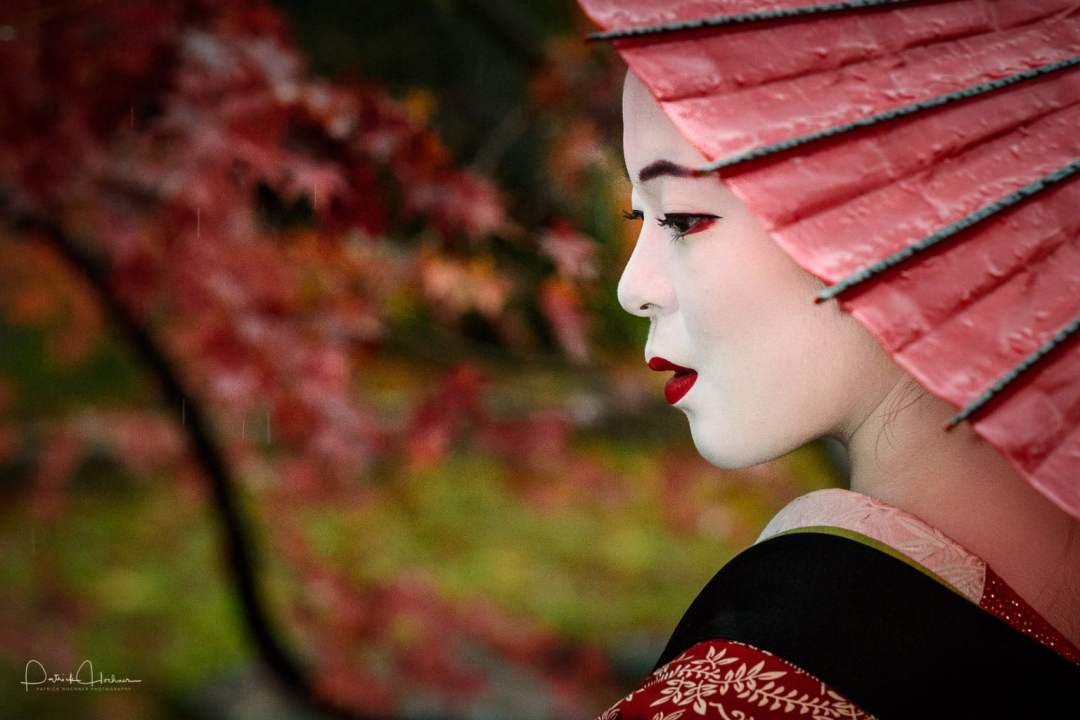 Maiko & Momiji Photo shoot
