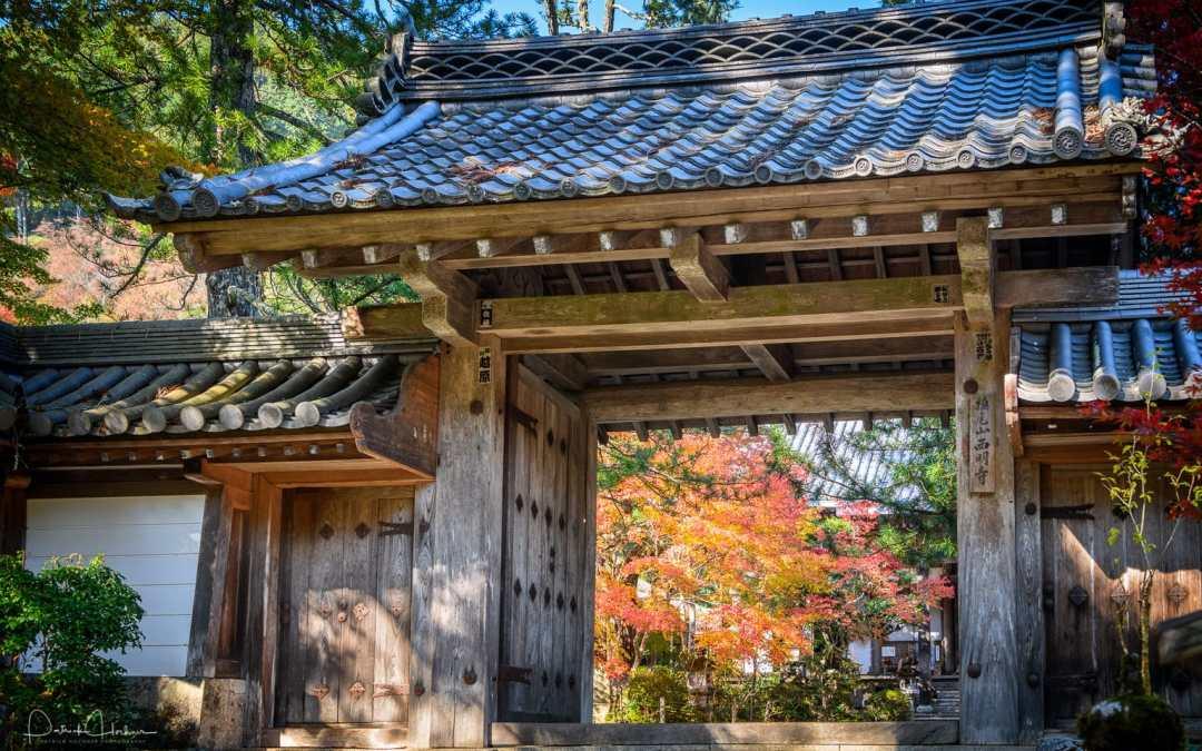 Takao – Fall 2017