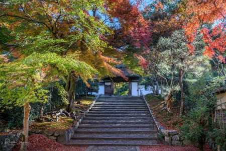 The stairs if Anraku-Ji temple, Kyoto