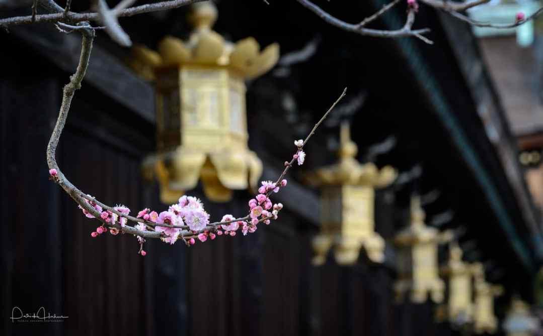 Temple Kitanotenmangu, Kyoto