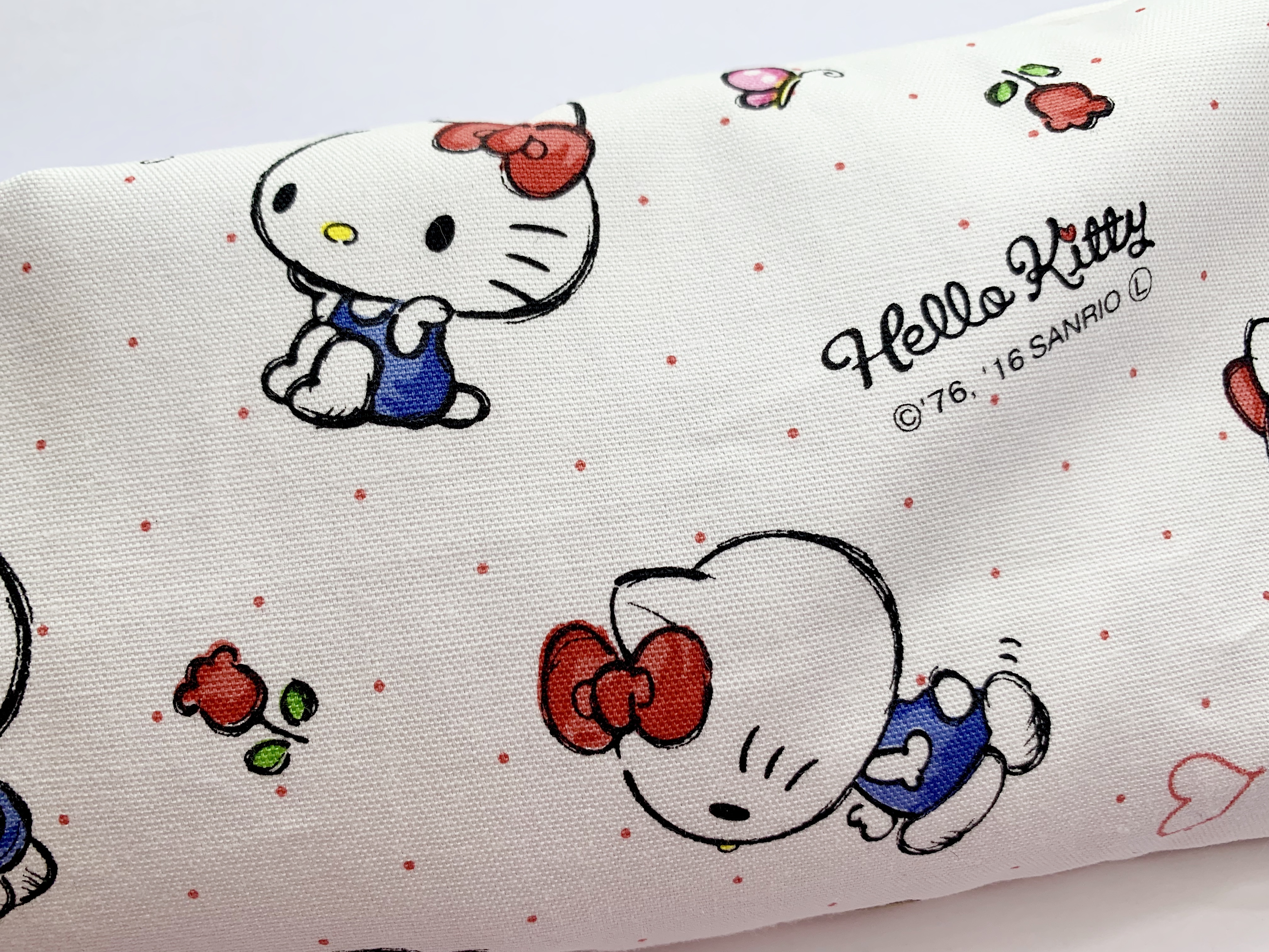 Hello Kitty Learning In White Sanrio Pinklabel