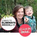 3 ways to eliminate weeds