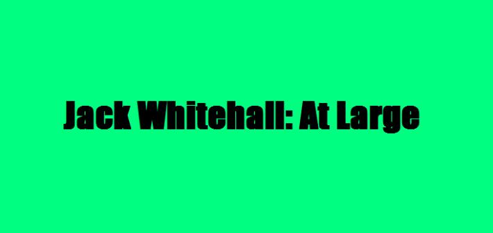jack whitehall at large, jack whitehall, review, mylavendertintedworld