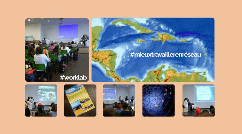 Caraibe : le Coreca en mode worklab et innovation pour mieux travailler en réseau
