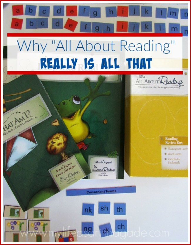 All About Reading Review via My Life as a Rinnagade