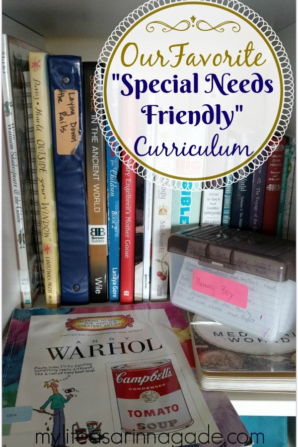 "Our Favorite ""Special Needs Friendly"" Curriculum"