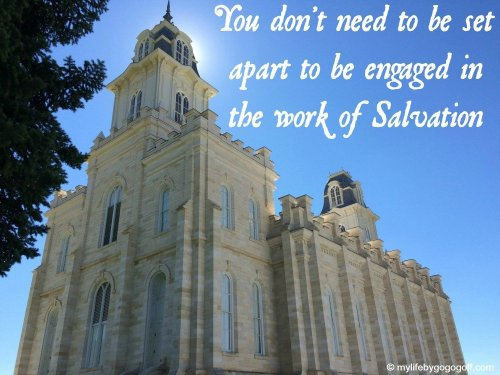You don't need to be set apart to be engaged in the work of Salvation