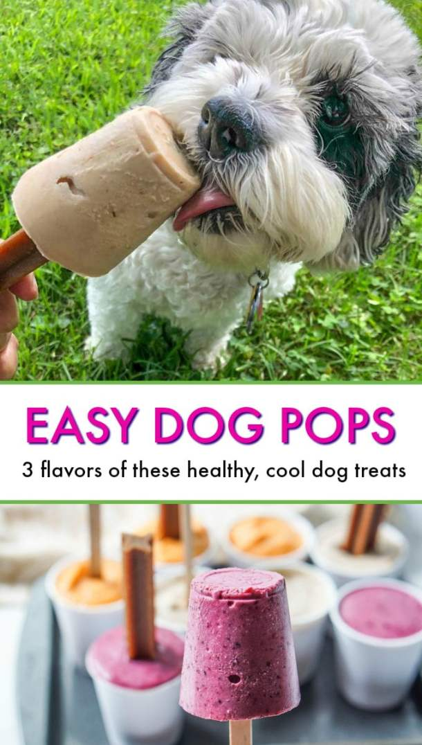dog licking banana pop and dog pops in their containers with text overlay