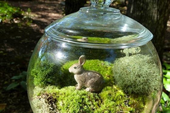 Etsy-Moss-Terrariums
