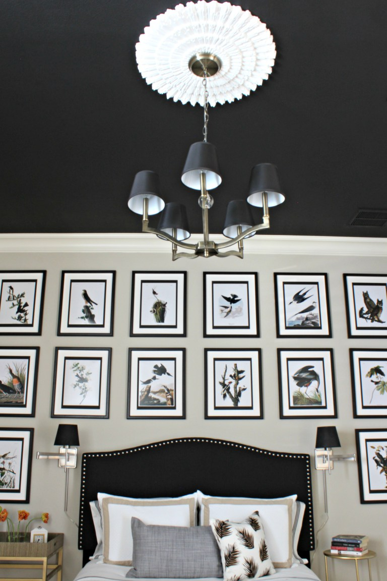 Focal Point Ceiling- Sharon Joy Interiors