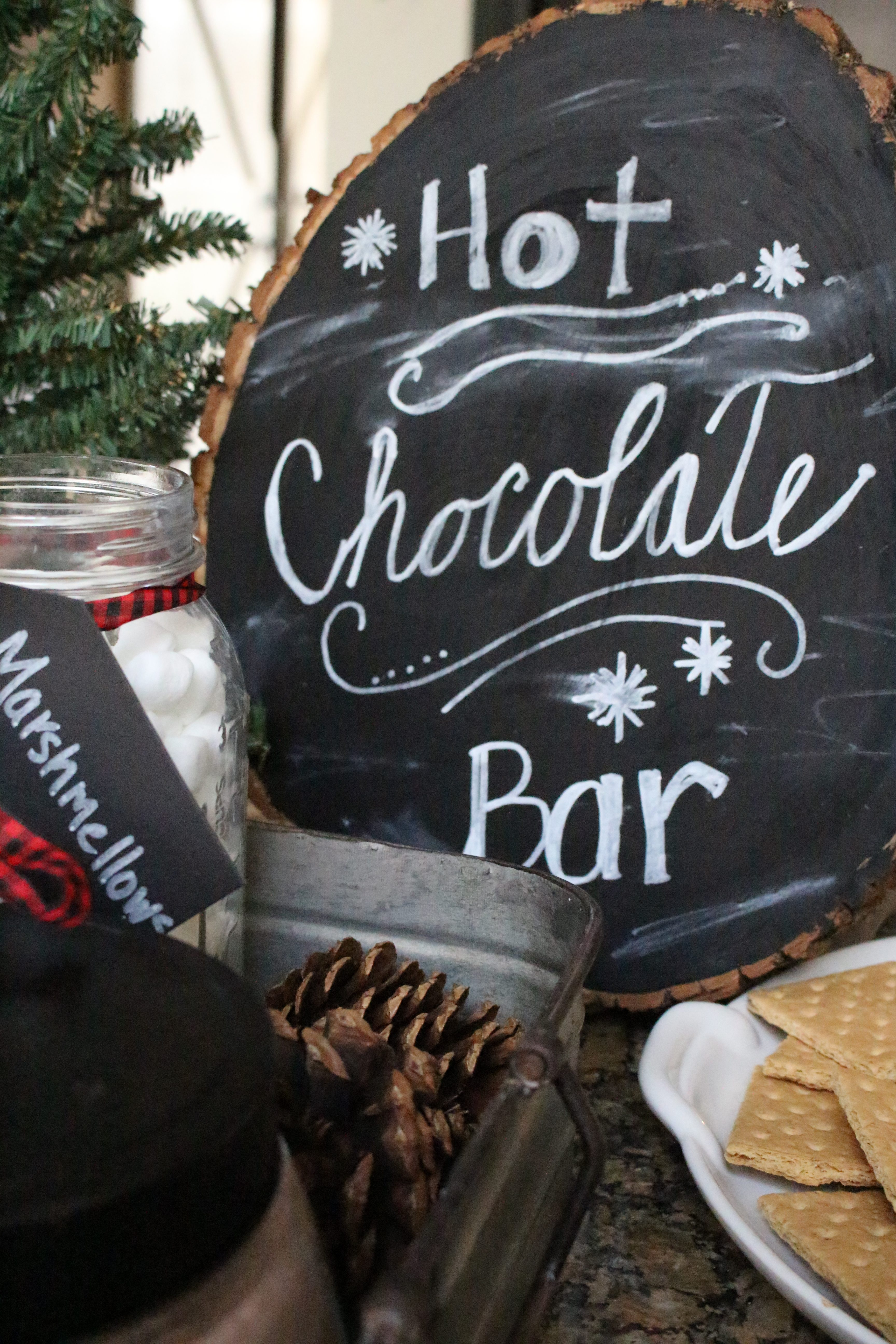 Hot Chocolate Station- winter themed party ideas- snow themed party- entertaining ideas- hot chocolate bar- party ideas