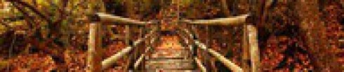 #trust, #hope, #love, #God, #Jesus, #Holy Spirit, Sandra McCravy, Sandi McCravy, Sandy McCravy, Sandra Brooks McCravy, Derek McCravy, Greg McCravy, Johnathan McCravy, Lord's Handyman Service, sandramccravy.com, mylifeinscripture.com, gritsandbacon.com, Jonathan McCravy, Derrick McCravy, mylifeingrace.com