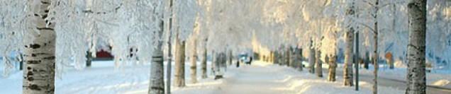 Gregory McCravy, #grace, #beautiful, #2017, #2018, #snow, #trust, #hope, #love, #God, #Jesus, #Holy Spirit, Sandra McCravy, Sandi McCravy, Sandy McCravy, Sandra Brooks McCravy, Derek McCravy, Greg McCravy, Johnathan McCravy, Lord's Handyman Service, sandramccravy.com, mylifeinscripture.com, gritsandbacon.com, Jonathan McCravy, Derrick McCravy, mylifeingrace.com