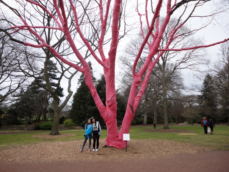 wrapped pink tree