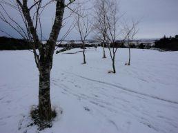 hillend-jan20132