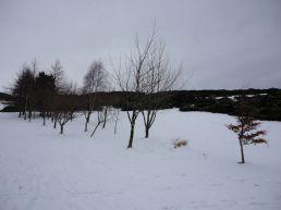 hillend-jan20133