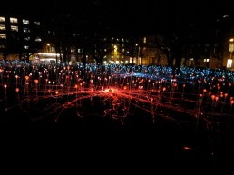field-of-lights13