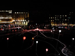 field-of-lights8