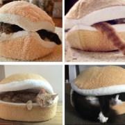 hamburger-cat-bed-warm-cat-bed-