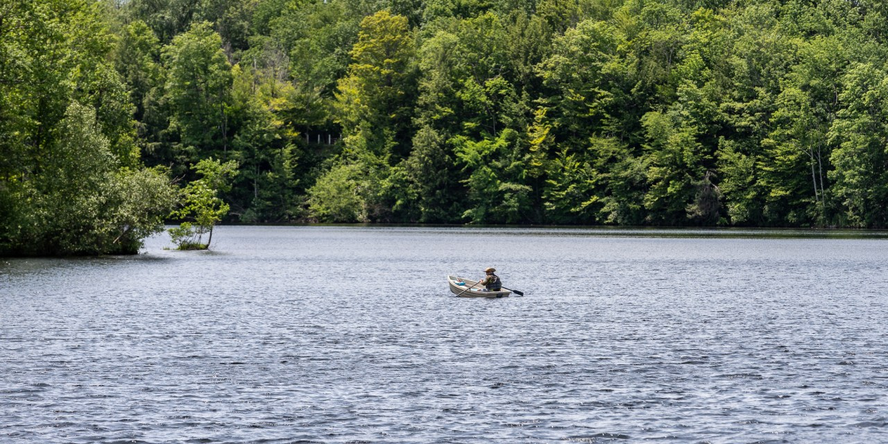 Cuomo announces free fishing days this weekend