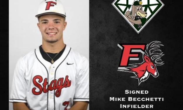 DiamondDawgs add two more to 2020 roster
