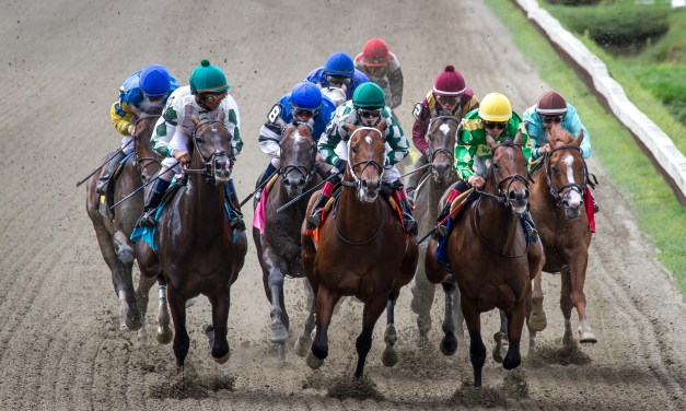 Horse racing tracks to open without fans June 1st
