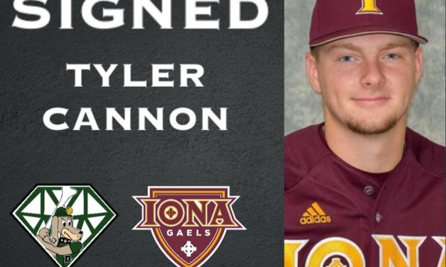 Mohawk Valley DiamondDawgs announce 2nd player signing for 2021 season