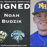 Another player joins the DiamondDawgs