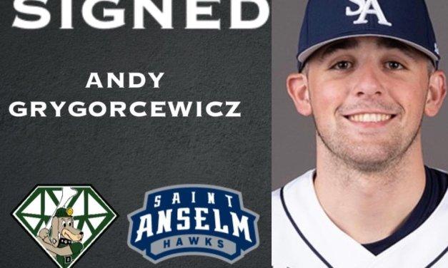 DiamondDawgs sign Grygorcewicz
