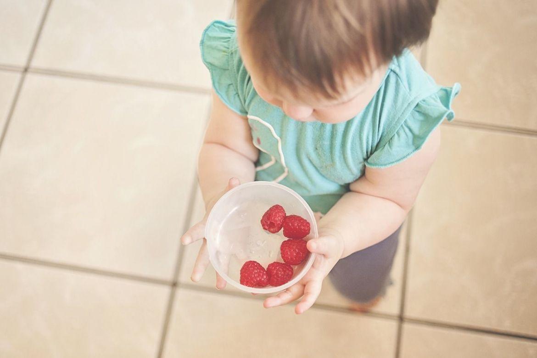 Alimentación bebé BLW