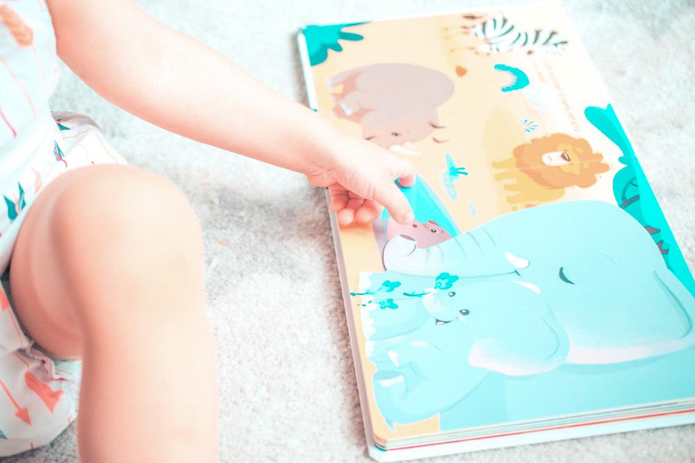 Libros sobre animales para niños