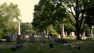 Cemetery 6