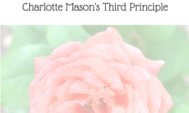Should I Expect My Child to Obey? Charlotte Mason's Third Principle
