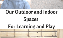 Spaces for Learning and Play