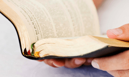 Homeschool Bible Lessons, The Charlotte Mason Way