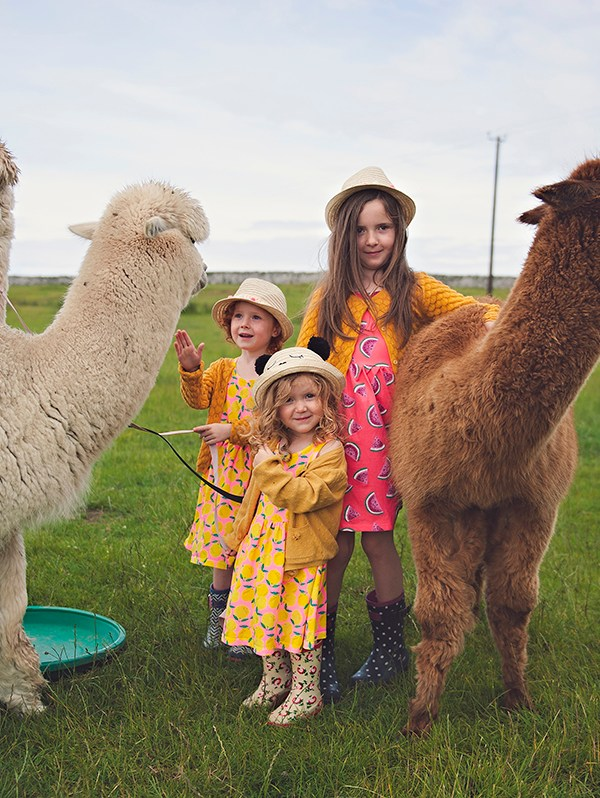 Dumfries & Galloway | Scotland for Kids – AD with Visit Scotland