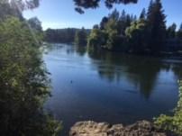Drake Park, Deschutes River