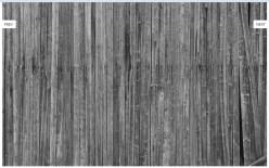 Wood 001 wallpaper ζωντανή ταπετσαρία ξύλου Loft mylofteu