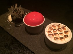 black sesame ice cream, White chocolate / liquorice mousse topped with foam of berries and sth with yuzu favour