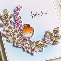 Colorado Craft Company August Release