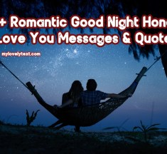 99+ Romantic Good Night Honey I Love You Messages & Quotes