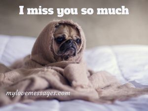 Top 110+ I Miss You Too Meme With Quotes for Him/Her