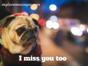 I Miss You Too Wholesome Memes for Him